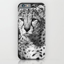 The Leopard, wildlife animal in black white iPhone Case