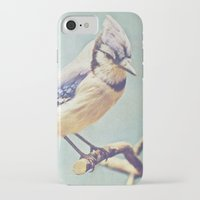 virginia iPhone & iPod Cases featuring Virginia Bluejay by Beth Thompson
