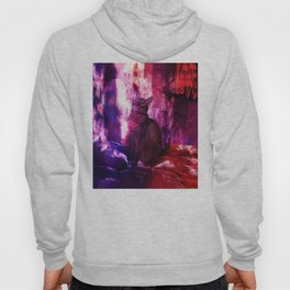 The Sunkissed Abyssinan Cat from Planet Kitarus Hoody