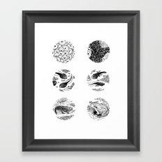 Tadpoles Framed Art Print