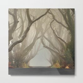 The Dark Hedges 2 Metal Print