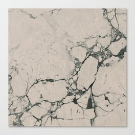 Nude Marble Canvas Print