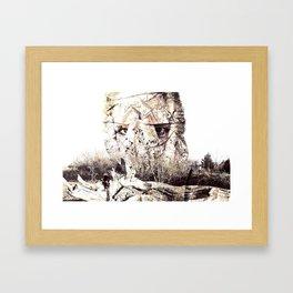 Pristine Framed Art Print