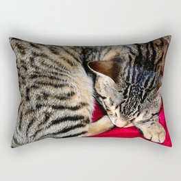 Cute Tabby Cat napping Rectangular Pillow