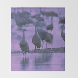 NOISY BIRDS Throw Blanket