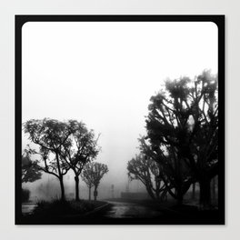 Morning fog. Canvas Print