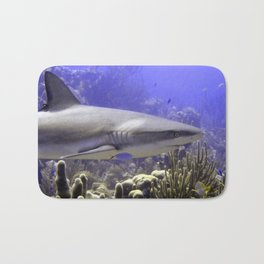 Shark Swimming Past Bath Mat