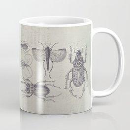 Vintage Beetles And Bugs Coffee Mug