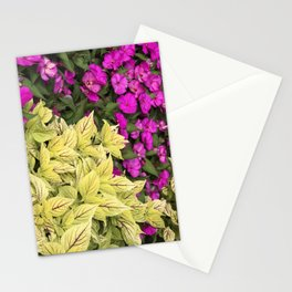 Flower Bed in Butchart's Garden Stationery Cards