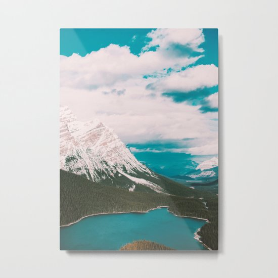 nature 2 Metal Print