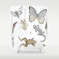 insects Shower Curtains featuring Insects by Claire Bond