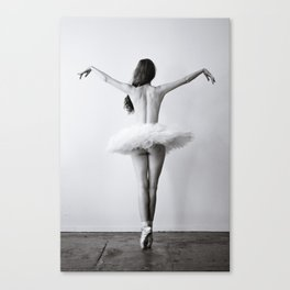 The Dying Swan Canvas Print