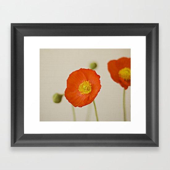 Poppy Flower Red Orange Yellow Bloom Framed Art Print