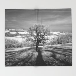 Lone tree over the East Somerset Railway Throw Blanket