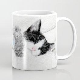 Kitten and teddy Coffee Mug