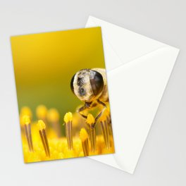 Pollen Feast Stationery Cards
