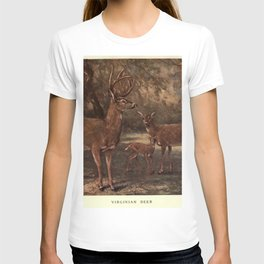 Vintage Virginia Deer Painting (1909) T-shirt