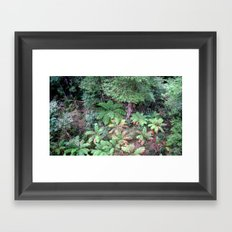 From 30 metres Above Framed Art Print