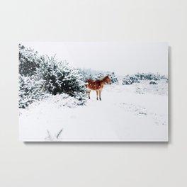 HORSE IN THE FALLING SNOW Metal Print