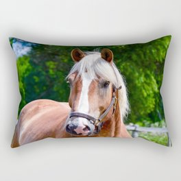 Equine Beauty Rectangular Pillow