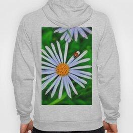 Blue daisy and a ladybird Hoody