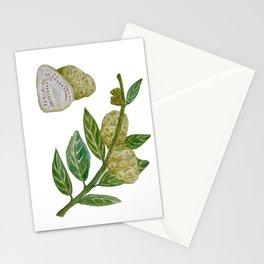 Noni of Hawaii Botanical Stationery Cards