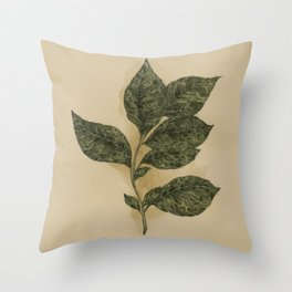 Basil Throw Pillow