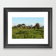 2007 - They Shoot Horses Don't They? Framed Art Print
