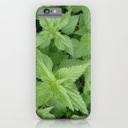 NETTLE  Magic Herb iPhone Case