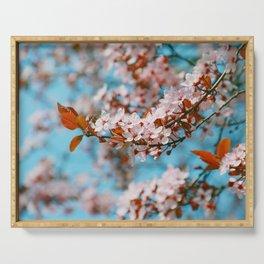 Cherry Cherry Spring Love Serving Tray