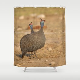 Birds of Namibia 4 Shower Curtain