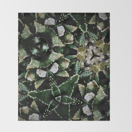 Succulents on Show No 1 Throw Blanket