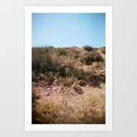 Cacti pt.2 Art Print