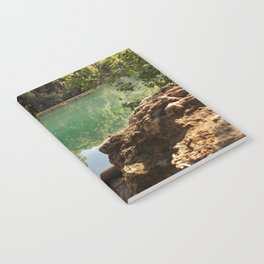 Ladybird Notebook
