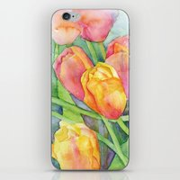 tulips iPhone & iPod Skins featuring Tulips by Susan Windsor