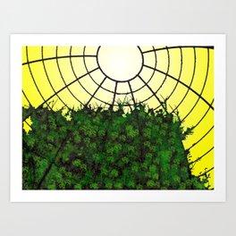 Canopy Art Print