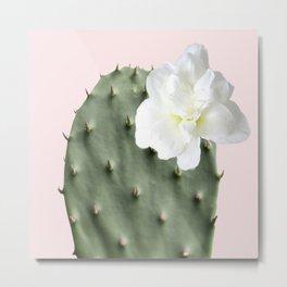 Green Cactus White Flower Pink Background #decor #society6 #buyart Metal Print