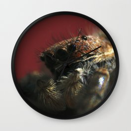 Spider on Red Wall Clock