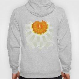 Apocopation Concord Flowers  ID:16165-104553-87970 Hoody