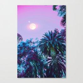 Summer Darkness Canvas Print