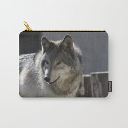 What are you looking at? Carry-All Pouch