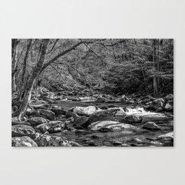 Spring Stream BW Canvas Print