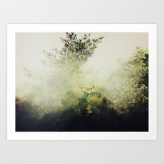 Glimpse Of Eden Art Print