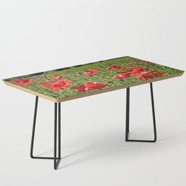 Poppies in Southern France Coffee Table