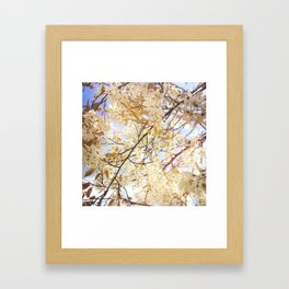 Under my tree Framed Art Print