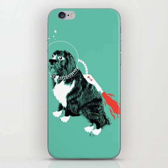 A Flying Dog In Outer Space iPhone & iPod Skin
