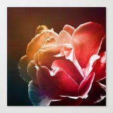 Dream Flower 2 Canvas Print
