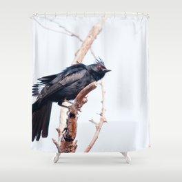 Black Bird Red Eyes Shower Curtain