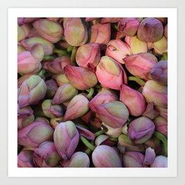 Lotos Flower Art Print