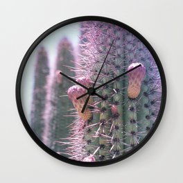 Prickly in Pink II Wall Clock